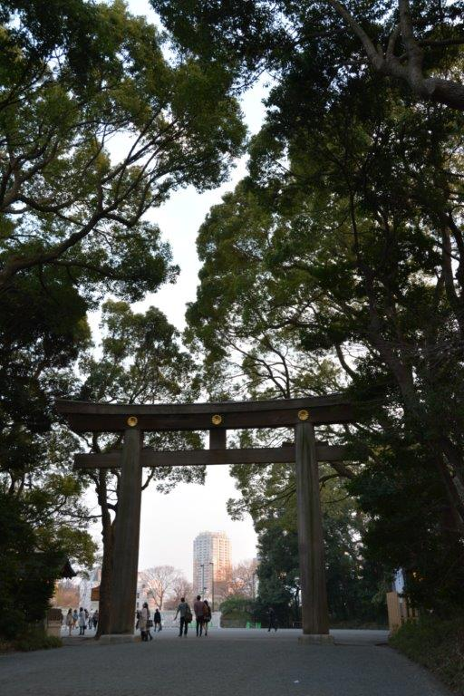 Torii at Meiji Temple